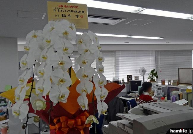 オフィス内の受付にも移転祝の鉢植えが飾られていた。