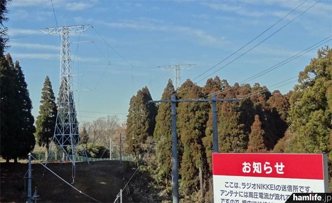 向かって右側が送信所からの給電線。左の2つの鉄塔間にダイポールアンテナが張られている