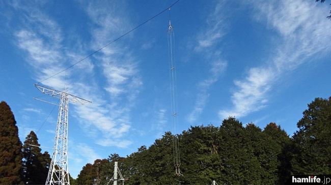 比較的長いアンテナを展開。給電は4線式?
