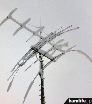 アマチュア無線用アンテナに着雪した例