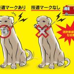 関東総合通信局、無線局の免許を受けず「狩猟用ドッグマーカー」から電波を発射した第四級アマチュア無線技士に対して69日間の行政処分